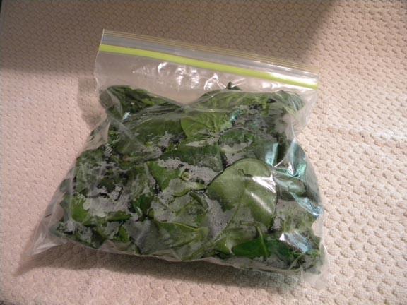 Organic Spinach 1#  $3.00/#