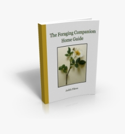 Foraging Companion Home Guide