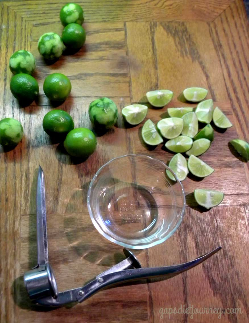 Working with Key Limes